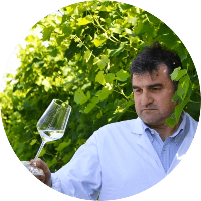 Bottega - Site Launch - Our winemakers - William Pasqualin